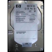 HP 454228-001 146Gb 15k SAS HDD (Курск)