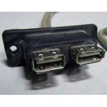 USB-разъемы HP 451784-001 (459184-001) для корпуса HP 5U tower (Курск)
