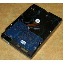 HDD 500Gb Hitachi HDS721050DLE630 донор на запчасти (Курск)