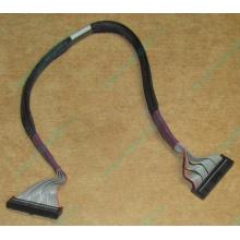FDD-кабель HP 271946-006 для HP ML370 G3 G4 (Курск)