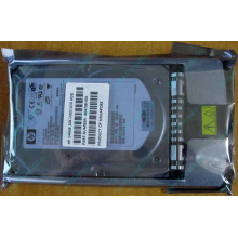 HDD 146.8Gb HP 360205-022 404708-001 404670-002 3R-A6404-AA 8D1468A4C5 ST3146707LC 10000 rpm Ultra320 Wide SCSI купить в Курске, цена (Курск)